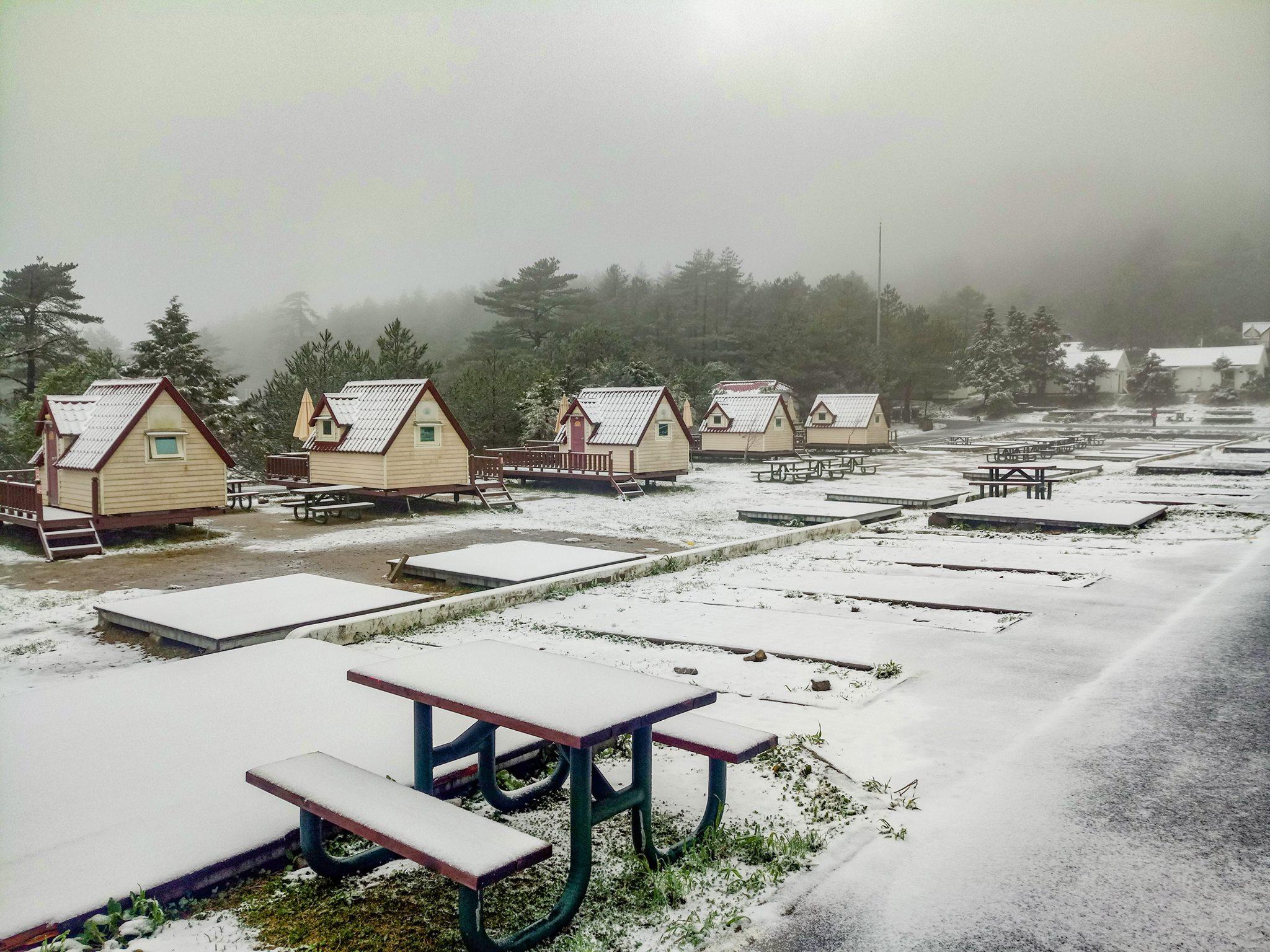 福壽山農場 下雪